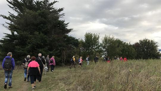 La marche de Randos Canétoises du 3 octobre 2017 a Canet vers l'embouchure de la Têt
