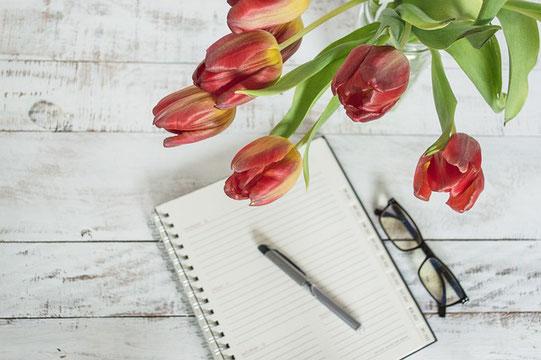 ミニチュアのソファとクッション、ライトシェード、鉢植えの観葉植物、窓。