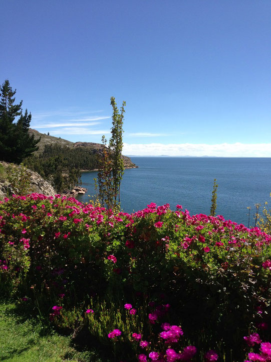Ausflug zur privaten Suasi Insel - Titicacasee