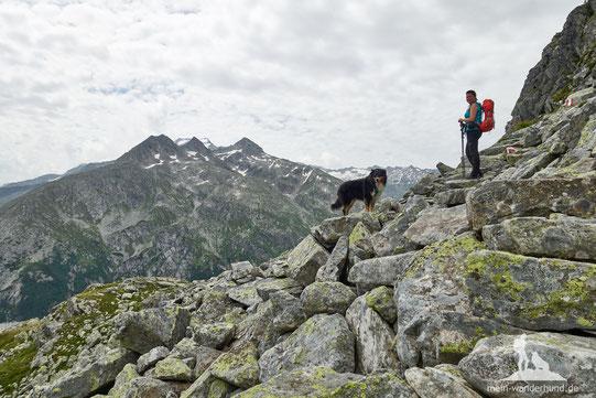 Wandern mit Hund auf die Arlhöhe