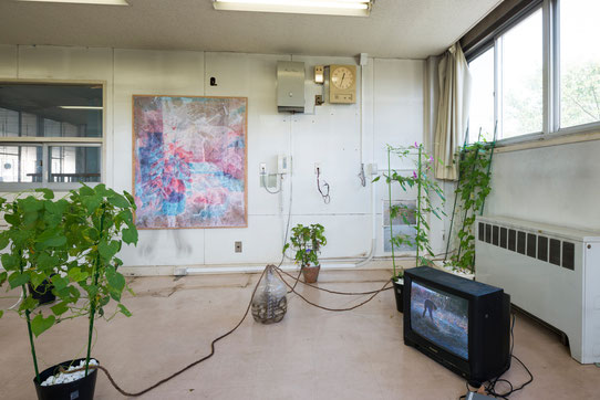 """Human/Vegetable ""installation view, 2015"