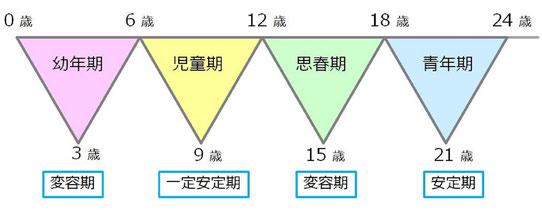 発達の4段階 0歳から24歳にかけて、4つの段階を経て発達をとげます・