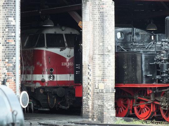 228 802-5 versteckt sich am 6. Juli 2013 im Rundhaus des Museums-Bw Halle P