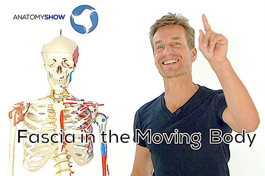Link to AnatomyShow online courses
