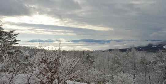12月17日朝9時頃。水が止まるのではというドキドキとは裏腹に静寂の雪景色でした from和室