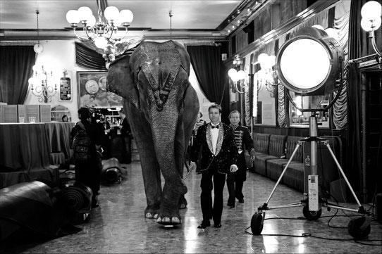 Gaëlle Girbes Circus Life Cirque photographie noir et blanc cirque d'hiver compagnons elephants coulisses