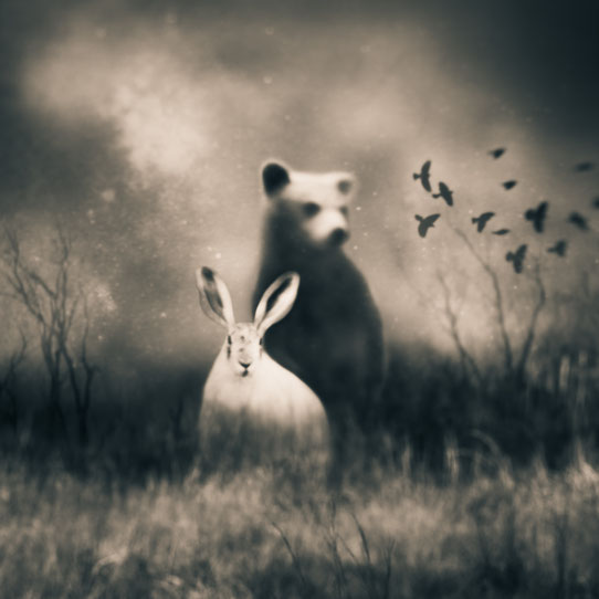 Tami Bone Texas Photography Mythos Imaginary friends rabbit bear Black and white