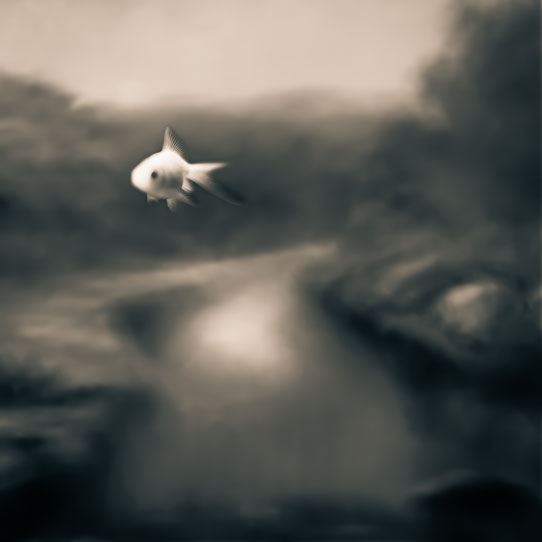 Tami Bone Texas Photography Mythos Fish Story river Black and white
