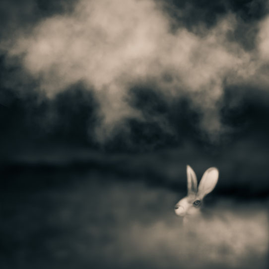 Tami Bone Texas Photography Mythos Talisman rabbit sky Black and white