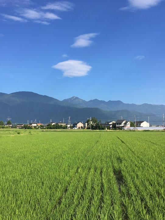 安曇野 松本市 常念岳 安曇野の初夏