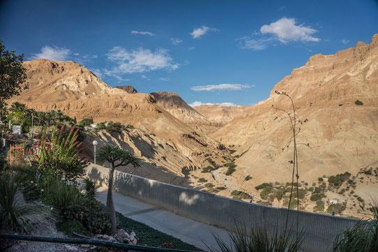 Vue depuis le Kibboutz situé à Ein Gedi près de la mer morte