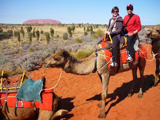 Balade en chameaux à Uluru