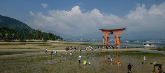 Le Tori géant dans la baie d'Itsukushima, Japon