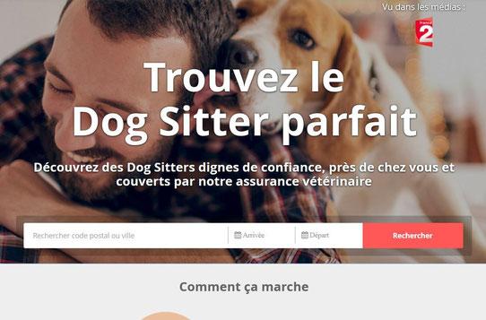 Capture du site web de DogBuddy !