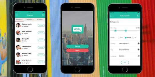 Pally App Website - Startup Voyage