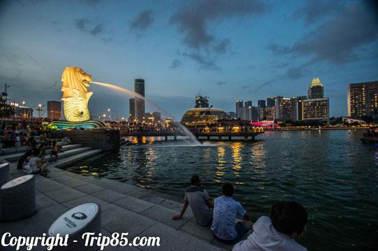 Le Merlion de nuit sur la baie de Singapour