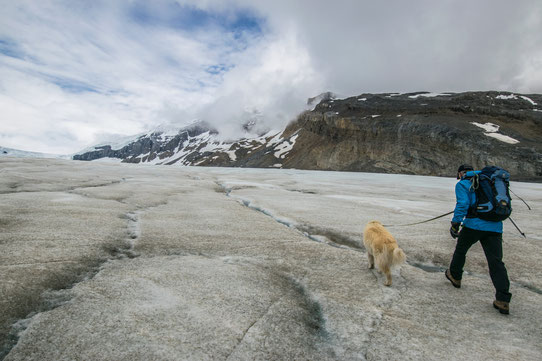Guide Canada - Randonnée sur Glacier Athabasca - IceWalks.com
