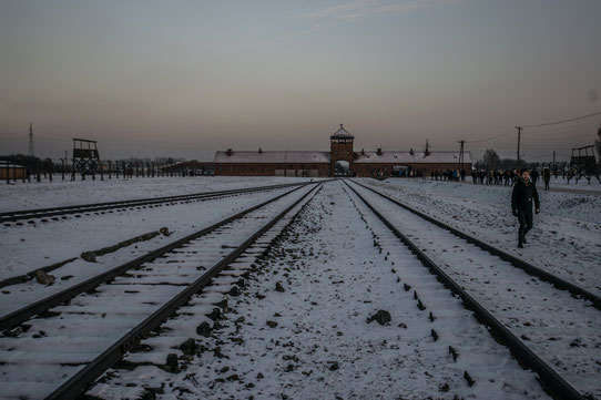 Le camp de Birkenau