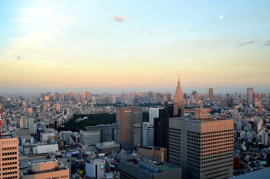 Vue sur Tokyo depuis l'hotel de ville de Tokyo