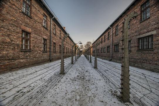 Le camp d'Auschwitz