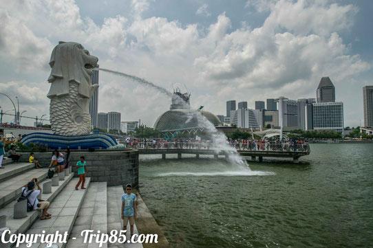 Le Merlion à Singapour !