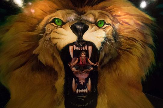 Se jeter dans la gueule du Lion ! Les trompe l'oeil vous permettent de faire des photos originales et marrantes !
