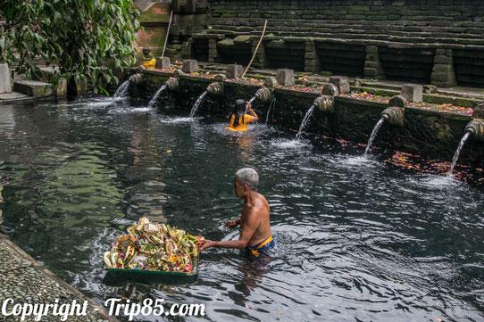 La source sacrée de Tirta Empul, Bali