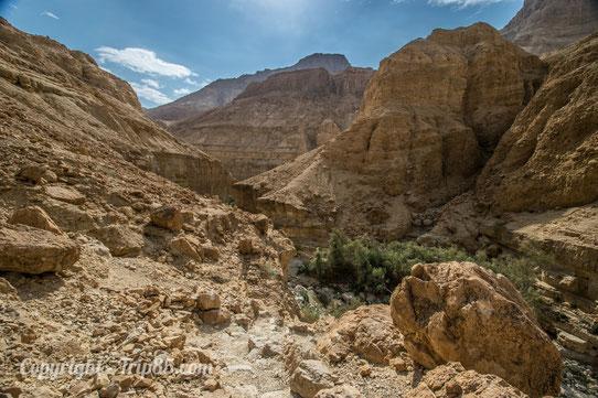 Parc National de Ein Gedi - Israel