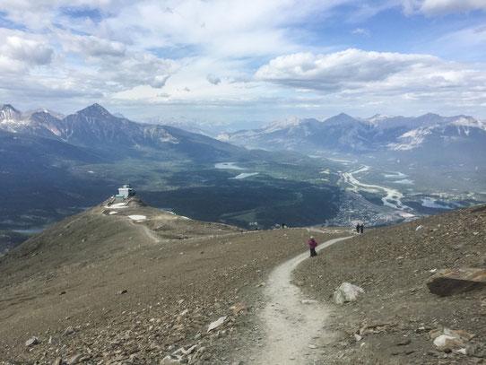 Vue depuis le sommet du SkyTram de Jasper !