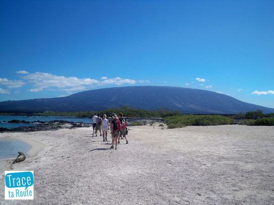 Plage et Volcan aux Galapagos, Source : Trace ta Route