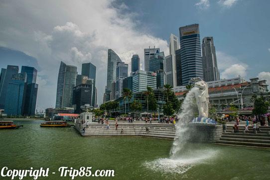 Le Merlion de Singapour !