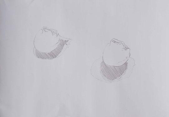 Grafik zwei Zwiebeln mit Schatten