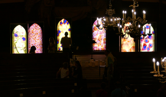 #SylvieLander-vitraux-Nuit de Lumiere-Eglise Saint-Thomas / Strasbourg