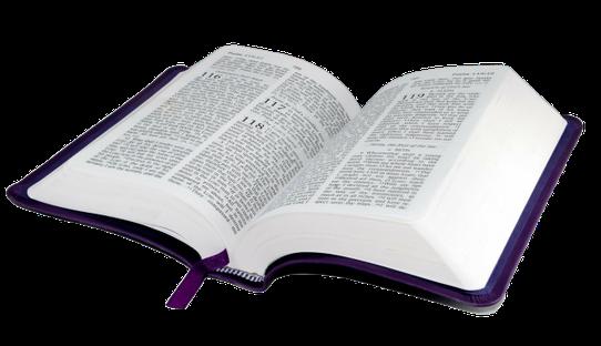 La Parole de Dieu désigne l'ensemble des messages divins adressés aux humains par l'intermédiaire des prophètes et des apôtres et mis par écrit de façon à constituer les Saintes Écritures ou Bible. Par extension, « la parole de Dieu» désigne la Bible.