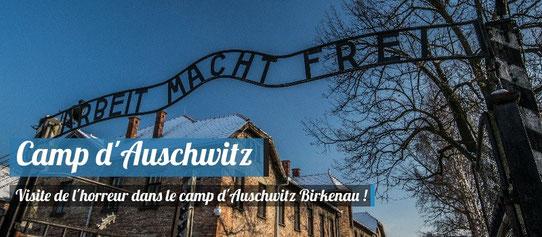 Visite du campe d'Auschwitz Birkenau !