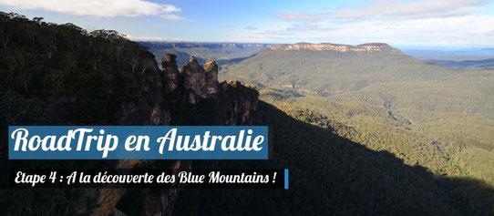 A la découverte des Blue Mountains !
