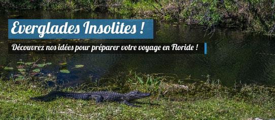 Les Everglades de manière insolite !