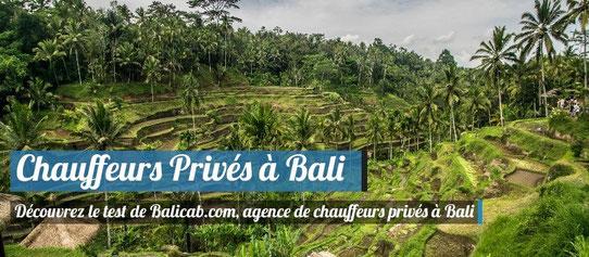 Test de Balicab - Chauffeurs privés à Bali