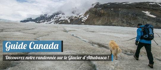 Guide Canada - Randonée Glacier Athabasca