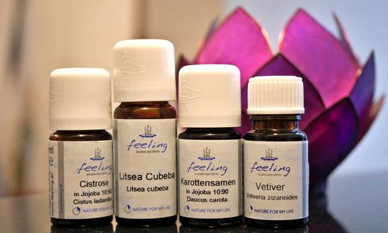 ätherische Öle, Cistrose, Litsea, Karottensamen, Vetiver