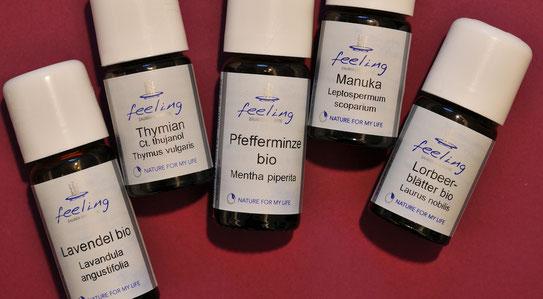 Aromatherapie, Ätherische Öle, Lavendel/Thymian/Pfefferminze/Manuka/Lorbeer