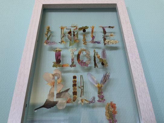 リトルリオンリリイのお花やさん 押し花フレーム 新看板