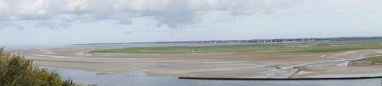 visite guidéesavec En baie de Somme, traversées en baie de somme, phoques baie de somme