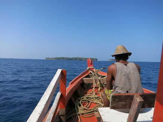Bootsausflug zur Birds-Island