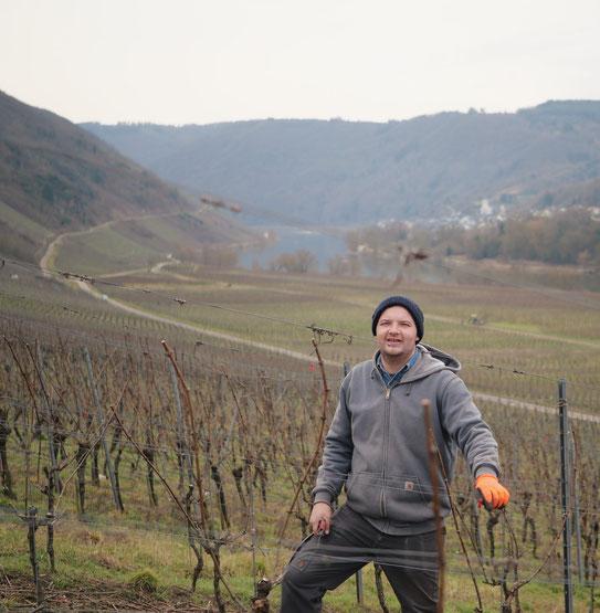 Rebschnitt im Weingut Arns
