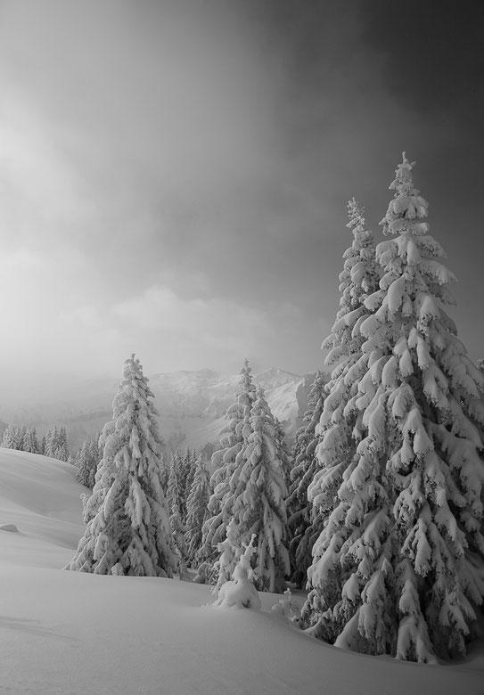 MG0847 • Mystère et boules de neige •