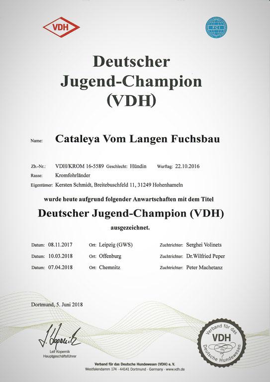Cataleyas Urkunde des VDH für den Deutschen Jugend-Champion