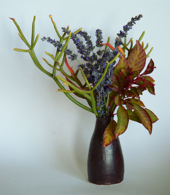 hamelia, firebush, lavender, goodwins creek gray, euphorbia firesticks, sticks on fire, monday vase, in a vase on monday, iavom, amy myers, photography, small sunny garden, desert garden, ceramics, pottery, stoneware