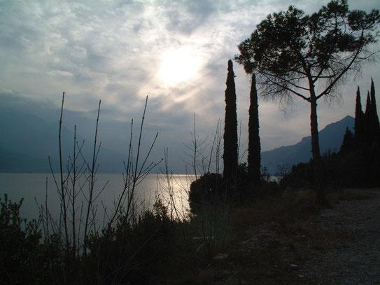 Verona biedt uistekende mogelijkheden om ook in de buurt wat te bezichtigen, zoals het prachtige 'Lago di Garda'.
