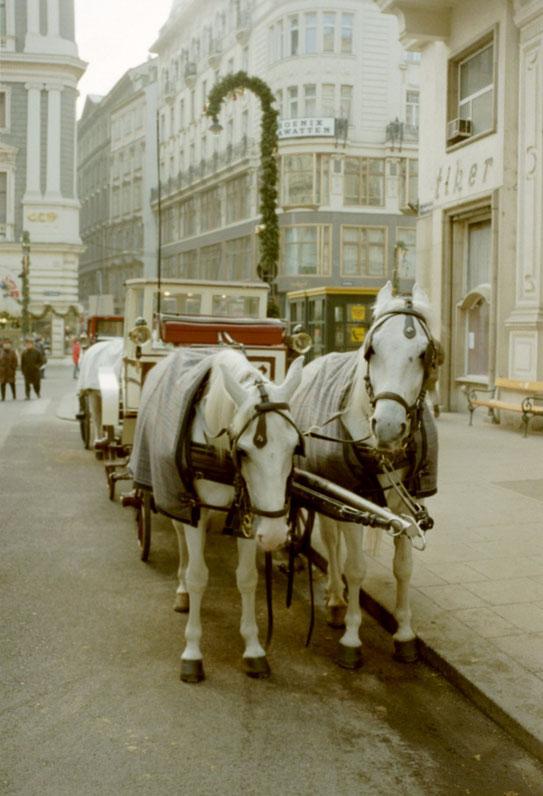 Voor alle reisverslagen van Oostenrijk zie hoofdmenu.